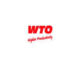 WTO logo midi